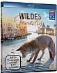 Wildes Venedig Blu-ray