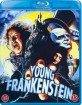 Young Frankenstein (1974) (DK Import ohne dt. Ton) Blu-ray