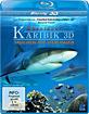Abenteuer Karibik 3D - Tauchen mit den Haien (Blu-ray 3D) Blu-ray