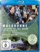 Berliner Philharmoniker - Waldbühnenkonzert 2017 Blu-ray