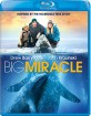 Big Miracle (2012) (US Import ohne dt. Ton) Blu-ray