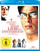Denn meine Liebe ist unsterblich - Mohabbatein Blu-ray