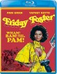 Friday Foster (1975) (Region A - US Import ohne dt. Ton) Blu-ray