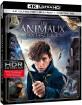 Les Animaux Fantastiques 4K (4K UHD + Blu-ray + UV Copy) (FR Import) Blu-ray
