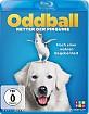Oddball - Retter der Pinguine Blu-ray