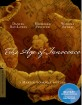 The Age of Innocence - Criterion Collection (Region A - US Import ohne dt. Ton) Blu-ray