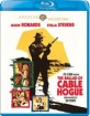 The Ballad of Cable Hogue (1970) - Warner Archive Collection (US Import ohne dt. Ton) Blu-ray