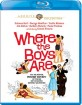 Where the Boys Are (1960) - Warner Archive Collection (US Import ohne dt. Ton) Blu-ray