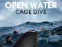 """Die """"Open Water""""-Reihe geht weiter - """"Open Water 3: Cage Dive"""" ab 27. Oktober 2017 direkt auf Blu-ray Disc"""
