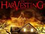 "Sekten-Horror ""The Harvesting - Die Sonnenwende naht"" im April 2017 auf Blu-ray"