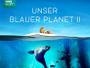 """Naturdokumentation """"Unser blauer Planet II"""" erscheint am 23.03. in HD und 4K inkl. HDR auf Blu-ray Disc"""