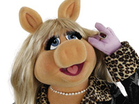 Interview-mit-Miss-Piggy-02.jpg