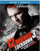 12 Rounds 3: Lockdown (Blu-ray + UV Copy) (Region A - US Import ohne dt. Ton) Blu-ray