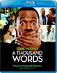 A Thousand Words (2012) (Blu-ray + UV Copy) (CA Import ohne dt. Ton) Blu-ray