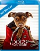A Dog's Way Home (Blu-ray + Digital Copy) (UK Import ohne dt. Ton) Blu-ray