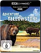 Adventure Yellowstone - Der Ruf der Wildnis 4K (4K UHD) Blu-ray