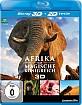 Afrika - Das magische Königreich 3D (Blu-ray 3D) Blu-ray
