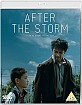 After-the-storm-2016-UK-Import_klein.jpg