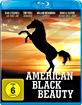 American Black Beauty Blu-ray