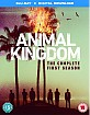Animal Kingdom: The Complete First Season (Blu-ray + UV Copy) (UK Import ohne dt. Ton) Blu-ray