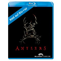 Antlers-2020-draft-UK-Import.jpg
