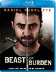 Beast of Burden (2018) (Region A - US Import ohne dt. Ton) Blu-ray