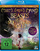 Beasts of the Southern Wild Blu-ray
