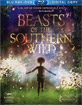 Beasts of the Southern Wild (Blu-ray + DVD + Digital Copy) (Region A - US Import ohne dt. Ton) Blu-ray