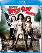 Bitch Slap / Garces en furie - Unrated Stacked Edition (CA Import ohne dt. Ton) Blu-ray