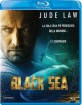 Black Sea (2014) (IT Import ohne dt. Ton) Blu-ray