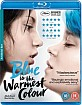 Blue-is-the-Warmest-Color-UK_klein.jpg