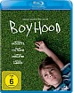 Boyhood (2014) (Blu-ray + UV Copy)