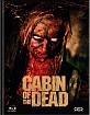 Cabin of the Dead - Limited Mediabook Edition (Cover E) (Blu-ray + DVD) (AT Import) Blu-ray