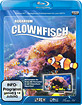 Clownfisch-Aquarium HD Blu-ray