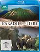 Ein Paradies für Tiere: Afrikas wildes Herz - The Great Rift  - IM LUXUSSCHUBER - ERSTAUSGABE - NEU IM PROTECTIVE SLEEVE! - Überweisung oder gebührenlos: PayPal For Friends!