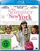 Ein Sommer in New York (2007) Blu-ray