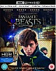 Fantastic Beasts and Where to Find them 4K (4K UHD + Blu-ray + UV Copy) (UK Import ohne dt. Ton) Blu-ray