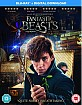 Fantastic Beasts and Where to Find them (Blu-ray + UV Copy) (UK Import ohne dt. Ton) Blu-ray