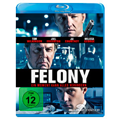 Felony-2013-DE.jpg
