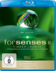 Forsenses 2 - Timber Lounge Blu-ray
