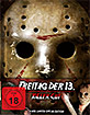 Freitag der 13. (2009) (Killer Cut) (Limited Mediabook Edition) (Cover A) Blu-ray