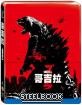 Godzilla (2014) - Limited Edition Steelbook (TW Import ohne dt. Ton) Blu-ray