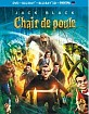 Chair de poule 3D (Blu-ray 3D + Blu-ray + DVD + UV Copy) (FR Import) Blu-ray