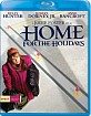 Home for the Holidays (1995) (Region A - US Import ohne dt. Ton) Blu-ray