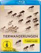 National Geographic: Das große Wunder der Tierwanderungen (inkl. Bonus-Disc) - ERSTAUFLAGE! - OOS! OOP! RARITÄT! - VERSAND IM LUFTPOLSTERUMSCHLAG !  - In Folie verschweißt! - NEU & OVP! - Überweisung oder gebührenlos: PayPal For Friends!