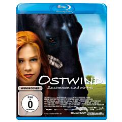 Ostwind-2013-DE.jpg