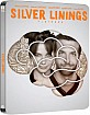 Silver Linings Playbook - Zavvi Exclusive Limited Edition Steelbook (UK Import ohne dt. Ton)