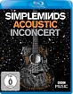 Simple Minds - Acoustic in Concert