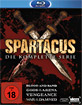 Spartacus: Blood and Sand + Gods of the Arena + Vengeance + War of the Damned (Die komplette Serie) (Neuauflage) Blu-ray