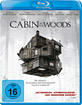 /image/movie/The-Cabin-in-the-Woods_klein.jpg